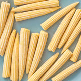 Babycorn. Pieces of fresh babycorn on a blue surface Royalty Free Stock Photos