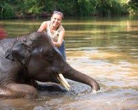 Babyelefant, der im Fluss und nahe bei einer stehenden Frau des Elefanten badet und ihn streicht Stockfoto