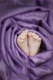 Babyfüße eingewickelt mit einem weichen Stoff Lizenzfreie Stockfotografie