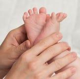 Babyfeet con las manos de la mamá Fotografía de archivo libre de regalías
