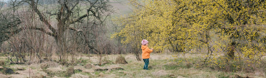 Babygirl standing near the tree that blossomed Stock Photography