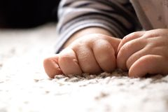 Babyhand op zacht tapijt royalty-vrije stock foto
