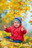 Babyjongen in het de herfstpark Royalty-vrije Stock Foto's