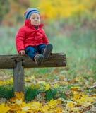 Babyjongen in het de herfstpark Royalty-vrije Stock Fotografie