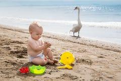 babyjongen het spelen op het strand dichtbij een zwaan Stock Afbeelding