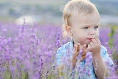 Babyjongen op gebied royalty-vrije stock foto's