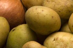 Babykartoffeln Lizenzfreie Stockfotos