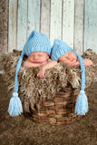 Babykorb mit Zwillingen Lizenzfreies Stockbild
