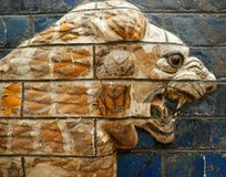 Babylonian Lion on the Ishtar Gate. A tile painting of a Babylonian lion once decorating the Ishtar Gate in Ancient Babylon - on display in the Topkapi Museum in stock photos