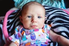 Babymeisje Stock Fotografie