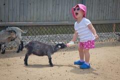 Babymeisje bij het petting van dierentuin Stock Afbeeldingen