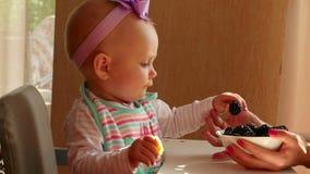 Babymeisje dat braambes eet stock video