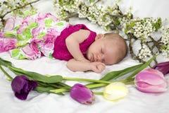 Babymeisje in roze binnen van mand met de lentebloemen. Stock Foto