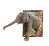 Babyolifant in bamboekader met 3d effect Royalty-vrije Stock Foto's