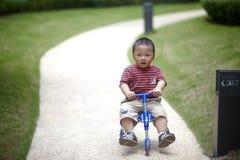 Babyreitdreirad Lizenzfreies Stockfoto