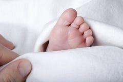 babys英尺 免版税库存照片