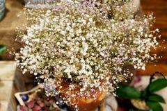 Baby s breath flowers arrangement Royalty Free Stock Photos