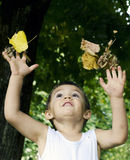 Babys fall game Royalty Free Stock Images