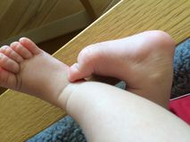 Babys feet. Cute little babys feet Stock Photography