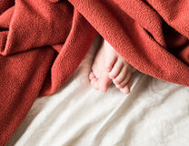 Babys fot under en räkning Arkivbild