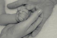 Babys hand i händerna av föräldrar Arkivbild
