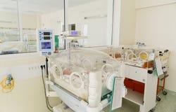 Babys innocents nouveau-nés dormant dans des incubateurs Photos libres de droits