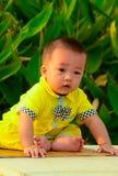Babys startande linje Royaltyfri Bild