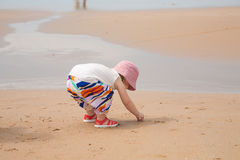 Babysammeln-Seeoberteile Stockfotografie