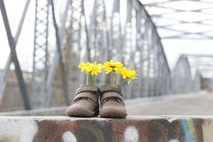 Babyschoenen met gele bloemen Royalty-vrije Stock Afbeelding