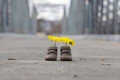 Babyschuhe mit gelben Blumen Stockfoto