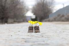 Babyschuhe mit gelben Blumen Stockbilder