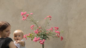 Babysitter with baby with rosebush stock video