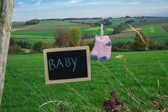 Babysocken und -tafel auf Stacheldraht gegen grüne Landschaft lizenzfreie stockbilder