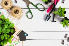 Babysprösslinge, Trieb, Sämling, Schössling in einer Holzkiste mit Deckel und Gartenwerkzeuge Flache Lage mit Kopienraum stockfoto