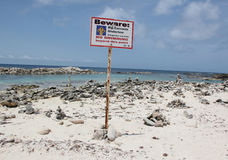 Babystrand, Aruba op de Caraïbische Zee Stock Afbeeldingen