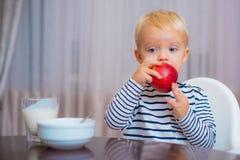 Babyvoeding Eet gezond Peuter die snack hebben Gezonde voeding Vitamineconcept Het kind eet appel Zit de jong geitje leuke jongen stock afbeelding