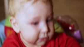 Babywanderer stock video