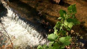 Babywasserfall Lizenzfreie Stockfotos