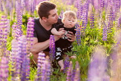 Babyzoon met papa op lupinegebied Royalty-vrije Stock Afbeelding