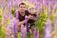 Babyzoon met papa op lupinegebied Stock Foto's