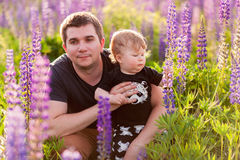 Babyzoon met papa op lupinegebied Royalty-vrije Stock Foto