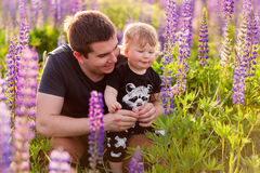 Babyzoon met papa op lupinegebied Stock Fotografie