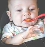 Babyzuigeling die eerst eten royalty-vrije stock foto's