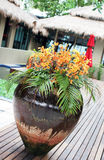 Bac de fleur Images stock