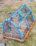 Bac de langoustine Image libre de droits