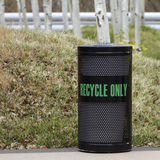 Bac de recyclage avec Aspen Trees Image stock