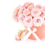 Bac de roses roses image libre de droits