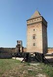 Bac-fästning, Serbien, Europa Arkivfoton
