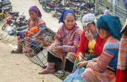BAC HA,老街,越南-第8,这12月, Bac Ha市场牛,是老街省,越南最大的牲畜市场  库存照片