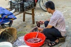 Bac Ha, Vietnam lizenzfreie stockfotos
